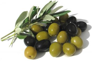مطلوب بيع محصول ثمار الزيتون للصندوق الهاشمي لتنمية البادية