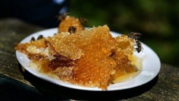 ماذا يحصل في الجسم عند تناول ملعقة عسل يوميا؟