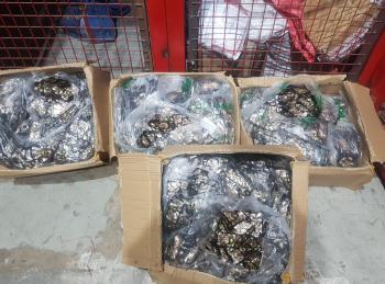 الجمارك تضبط مخدرات في مطار الشحن (صور)