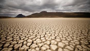 الأمم المتحدة تؤكد ضرورة التعايش مع الطبيعة