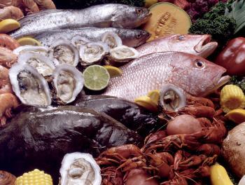 اعتقال 14 شخصا في الصين بسبب المأكولات البحرية