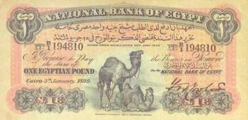 بيع ورقة نادرة من جنيه الجملين المصري في لندن بـ10 آلاف إسترليني