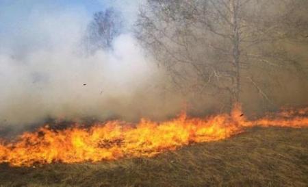 اخماد حريق اعشاب بمحيط خزان مياه زبدا في إربد