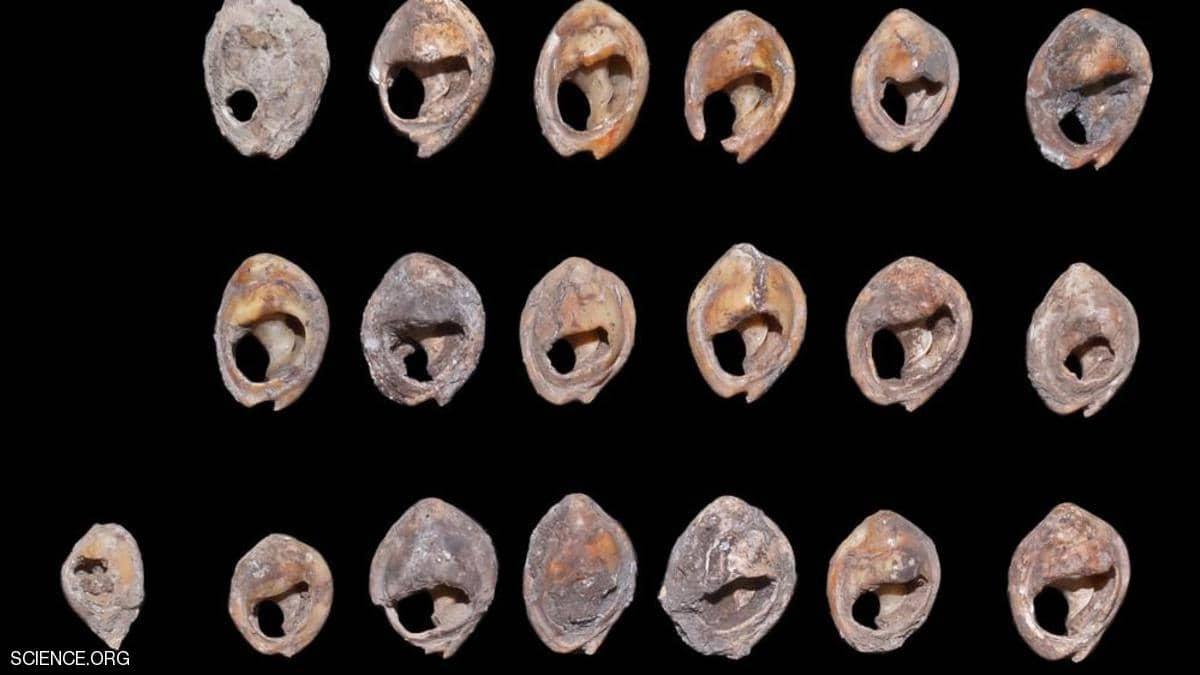 اكتشاف أقدم مجوهرات ..  عمرها آلاف السنين