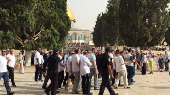 عشرات المستوطنين المتطرفين يقتحمون باحات الاقصى