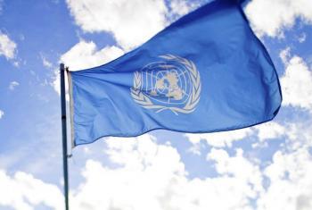 الدبلوماسية البرلمانية في يومها العالمي أداة لتعزيز الديمقراطية