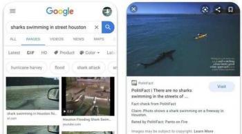 غوغل تضيف خدمة تقصي الحقائق إلى الصور