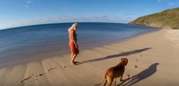 بالفيديو: مليونير يعيش وحيداً في جزيرة منذ 20 عاماً