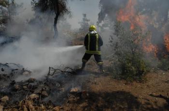 إخماد حريق أشجار حرجية في المزار الشمالي