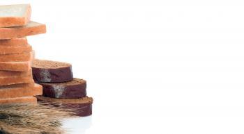 دراسة تكشف خدعة الخبز الأبيض والأسمر