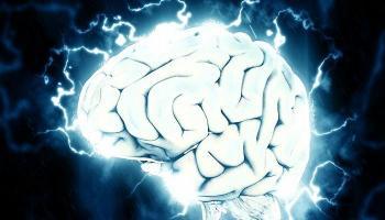 كم يحتاج الدماغ من الوقت لحفظ الكلمات الجديدة؟
