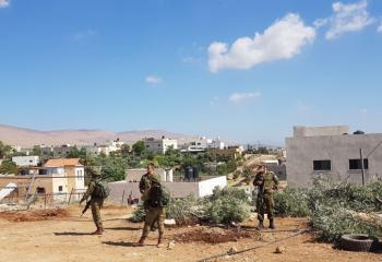 الاحتلال يقتلع عشرات الأشجار في الأغوار