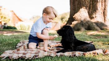 الأمير ويليام يكسر القاعدة بشأن مدرسة ابنه