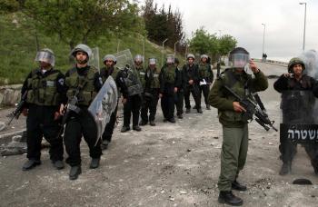 الاحتلال يعتقل 13 فلسطينيا ويستولي على أراض ويقتلع اشجار زيتون