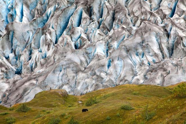 """افضل صورة لـ""""ناشونال جيوغرافيك"""" كوكبنا big2012829643RN522.jpeg"""