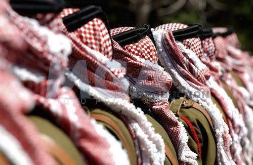 ذكرى استقلال ( المملكة الاردنية الهاشمية ) السبعون .....بالصور 20127141037RN473.jpe