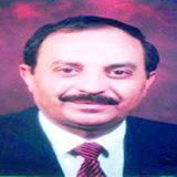 محمود الشيبي